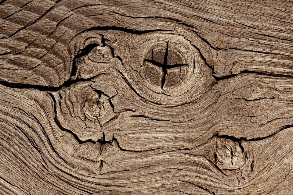 natur, materiale, træ